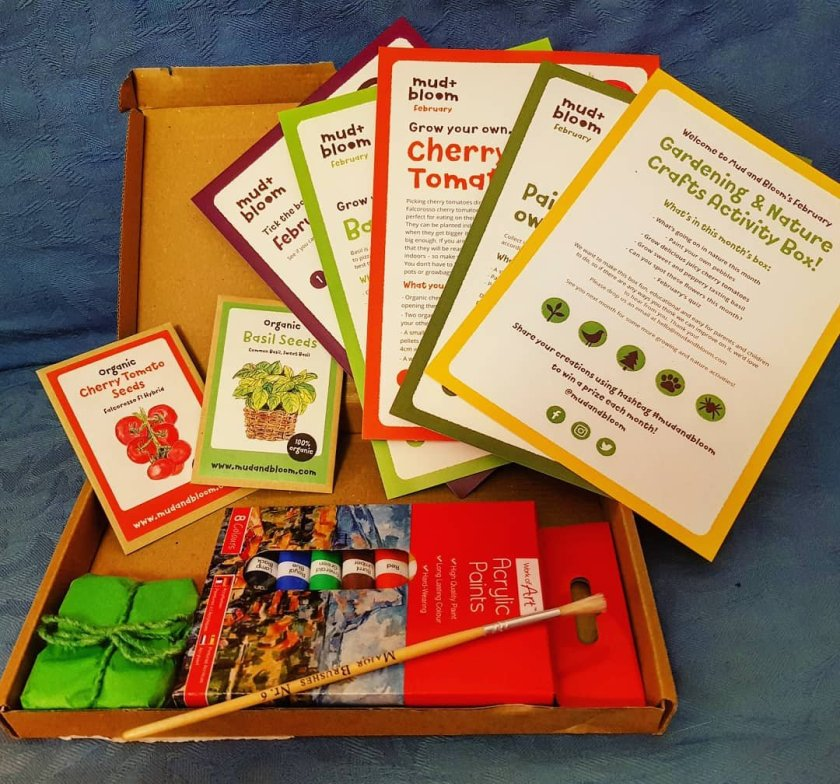 Mud and Bloom nature crafts and gardening subscription box - image of contents