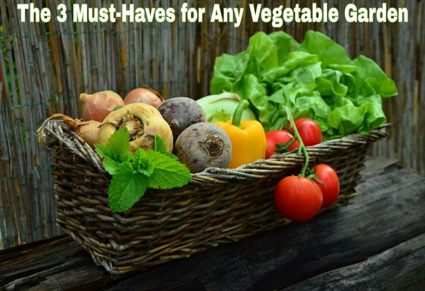 The 3 Must-Haves for Any Vegetable Garden title with a picture of delicious fresh vegetables in a basket.
