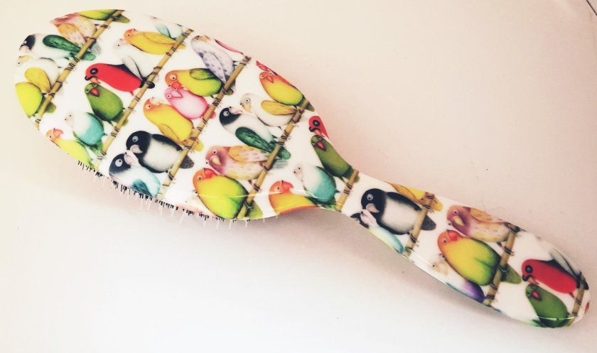 Rock and Ruddle hairbrush with pretty bird design