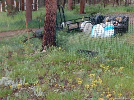 neighbor's rubbish pile