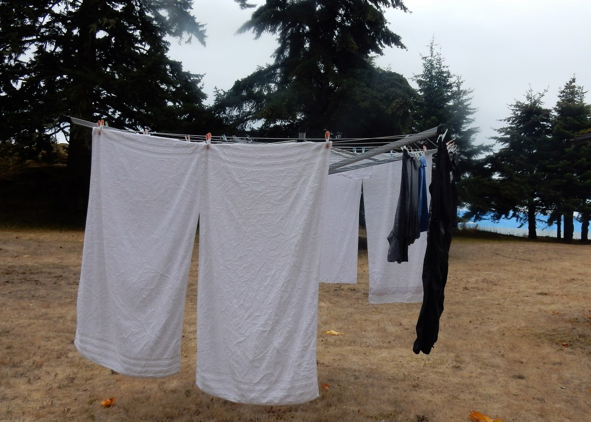 Laundry – Back to My  Roots
