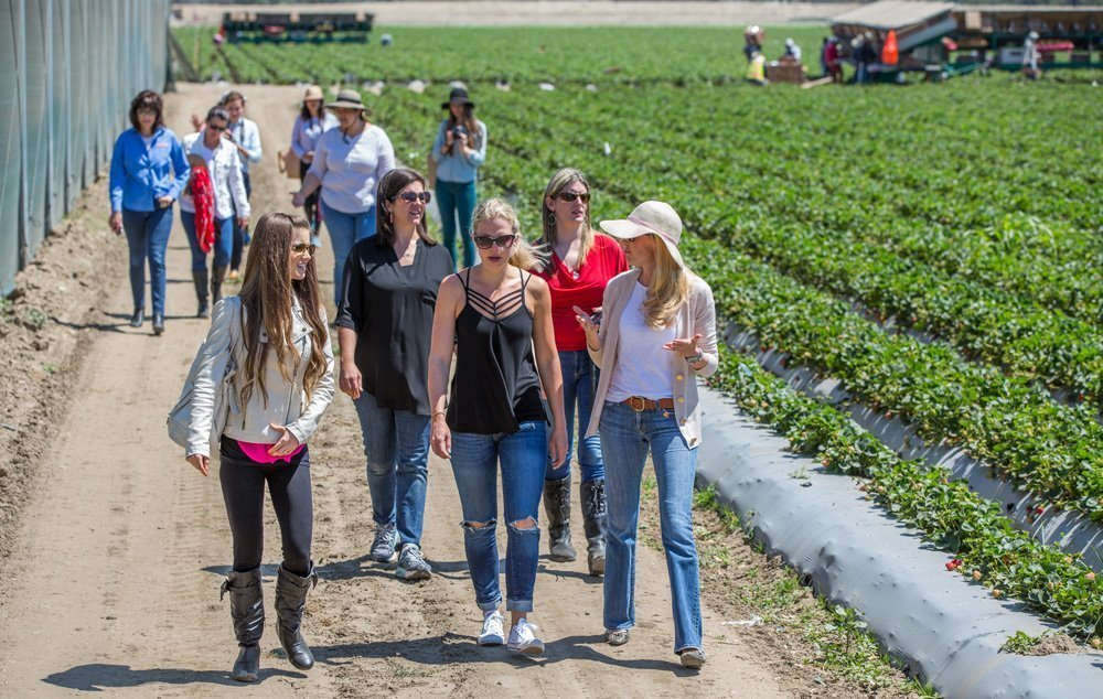 California Strawberries – Get Real in California Recap