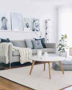 Amazing living room ideas (9)