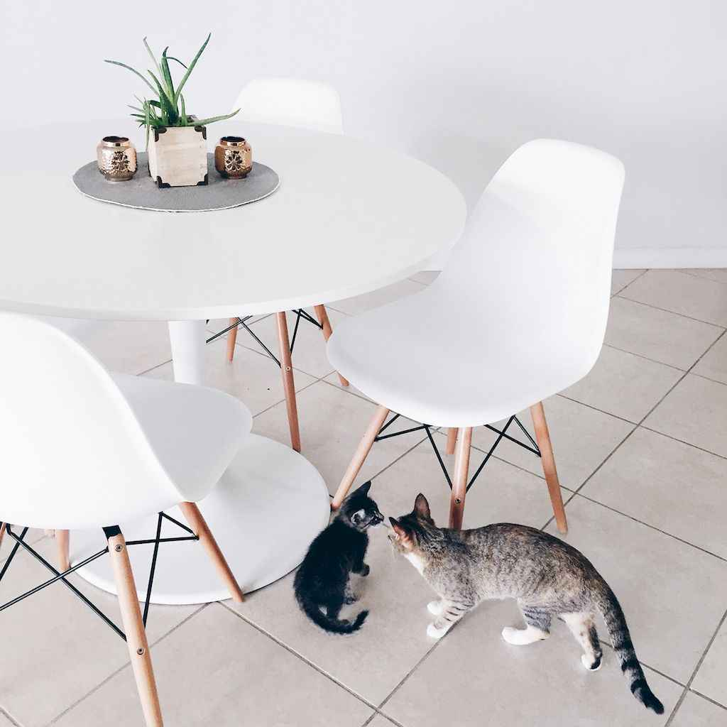 Smart solution for your minimalist dining room (12)