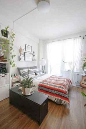 100 Awesome Apartment Studio Storage Ideas Organizing (27)