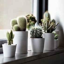 50 cool apartment garden ideas (29)