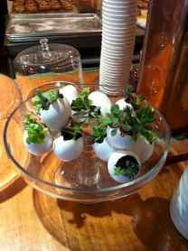 30 Brilliant DIY Egg Shell Seed Starters Crafts Ideas (14)