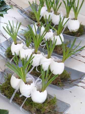 30 Brilliant DIY Egg Shell Seed Starters Crafts Ideas (20)