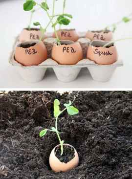 30 Brilliant DIY Egg Shell Seed Starters Crafts Ideas (29)