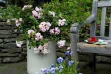 60 Gorgeous Container Gardening Ideas Decorations And Makeover (27)
