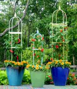 60 Gorgeous Container Gardening Ideas Decorations And Makeover (3)