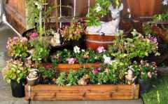 60 Gorgeous Container Gardening Ideas Decorations And Makeover (43)