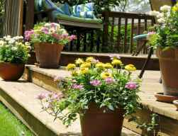 60 Gorgeous Container Gardening Ideas Decorations And Makeover (8)