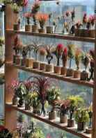 100 Beautiful DIY Pots And Container Gardening Ideas (4)