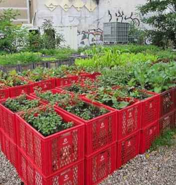 100 Beautiful DIY Pots And Container Gardening Ideas (49)