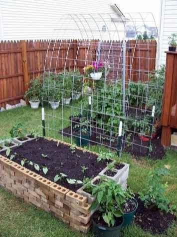 25 Easy DIY Vegetable Garden Small Spaces Design Ideas For Beginner (19)
