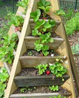 25 Easy DIY Vegetable Garden Small Spaces Design Ideas For Beginner (7)