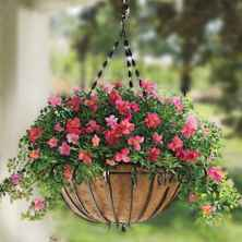 40 Beautiful Container Gardening Decor Ideas For Beginners (22)