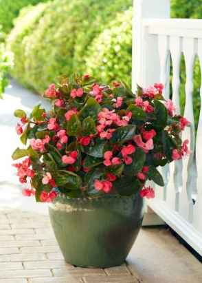 40 Beautiful Container Gardening Decor Ideas For Beginners (25)