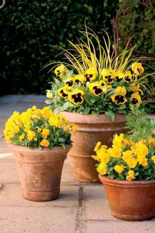 40 Beautiful Container Gardening Decor Ideas For Beginners (36)