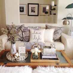 30 Best Farmhouse Living Room Furniture Design (17)