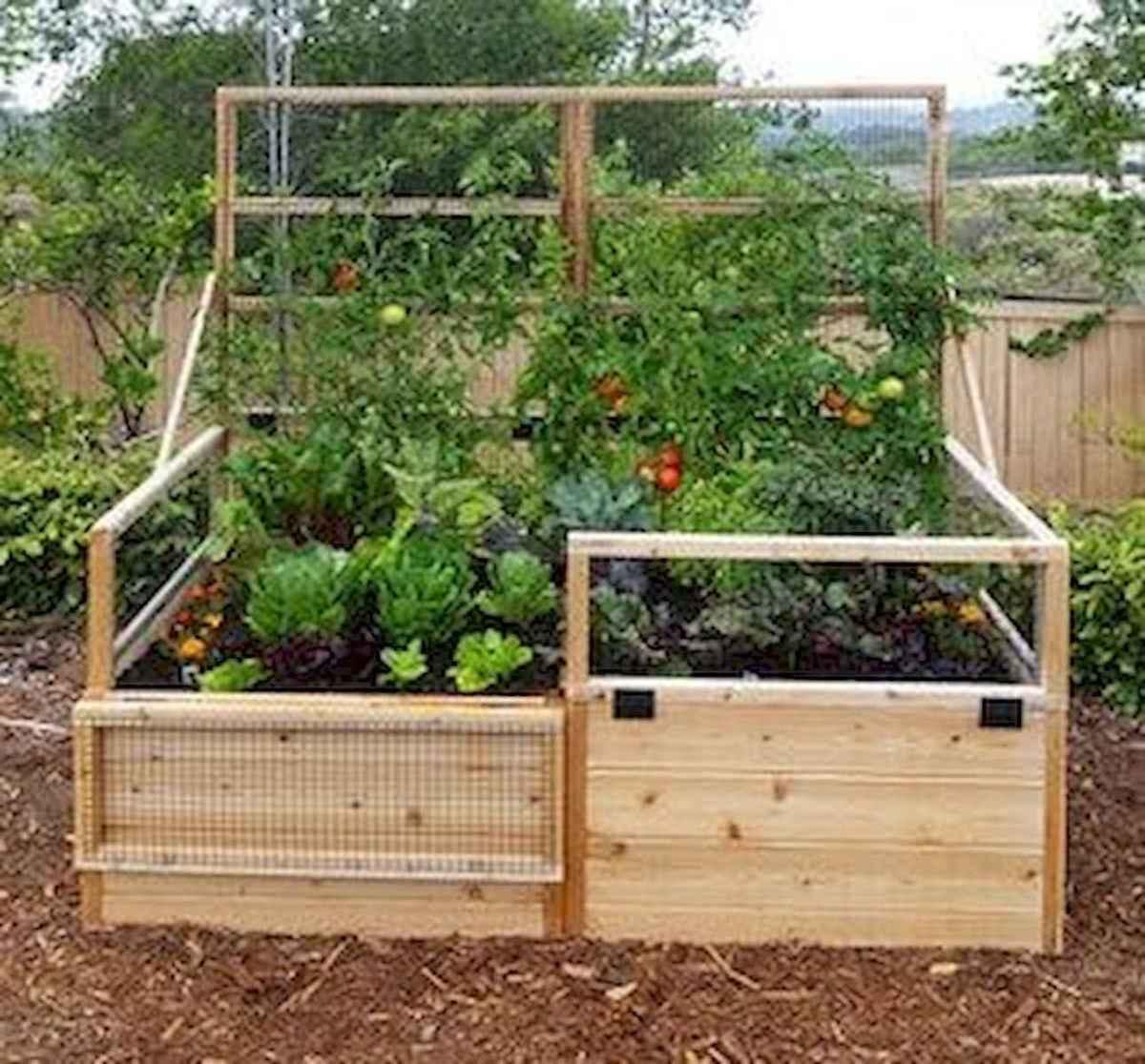 50 Best Garden Beds Design Ideas For Summer (14)