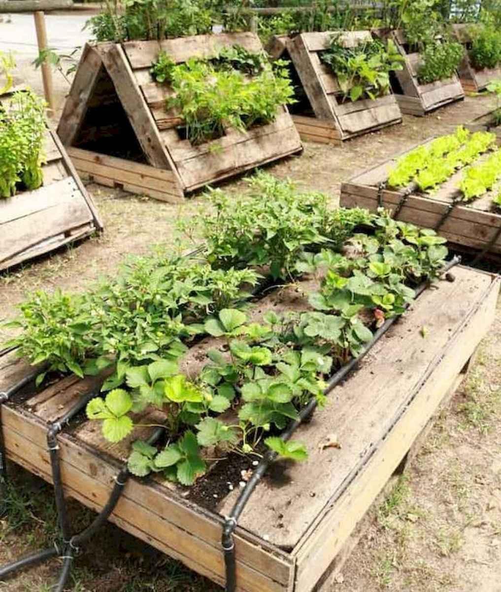 50 Best Garden Beds Design Ideas For Summer (15)