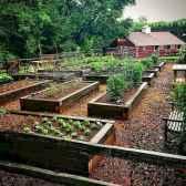 50 Best Garden Beds Design Ideas For Summer (39)