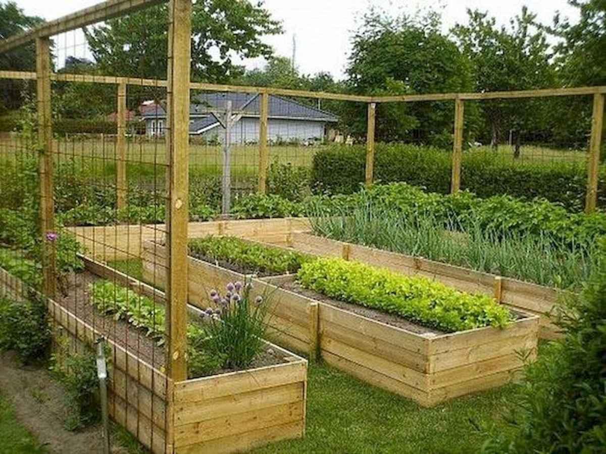 50 Best Garden Beds Design Ideas For Summer (48)
