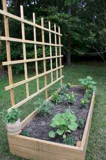 55 Favorite Garden Boxes Raised Design Ideas (48)