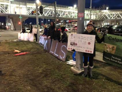 Calgary Animal Rights Effort