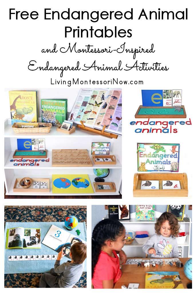 Free Endangered Animal Printables and Montessori-Inspired Endangered Animal Activities