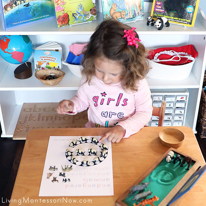 Admiring Her Work with E for Endangered Animals Do-a-Dot and Panda Good Luck Minis Pattern