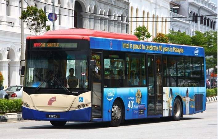 Image result for cat bus penang
