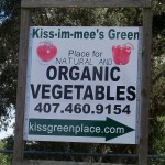 Kissimmees Green Place