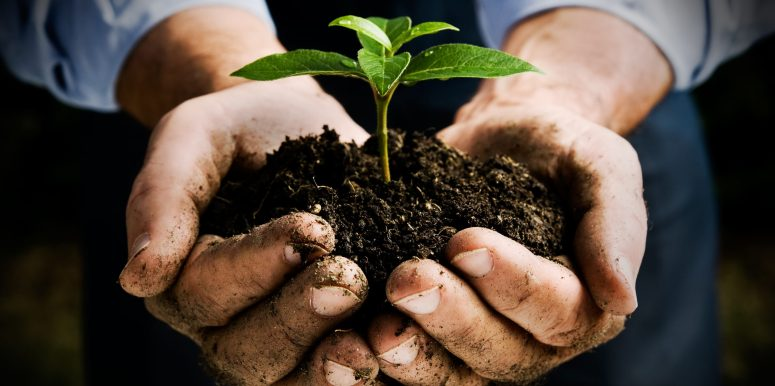 What's Soil Health Got to Do With GMOs? Part 1