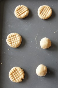Soft Peanut Butter Cookies ~ Living on Cookies
