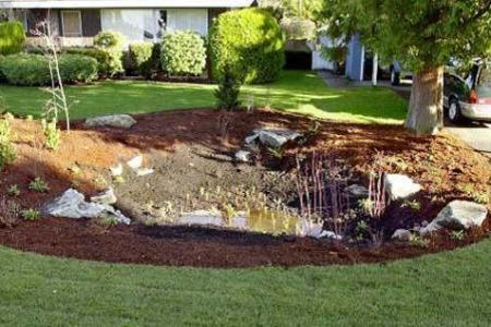 How to build a rain garden