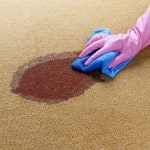 Cheap and easy carpet cleaning solutions