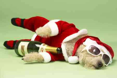 21 ways to deal with your post-holiday financial hangover