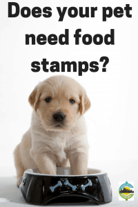 does-your-pet-need-food-stamps