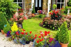 How to Get Started With Gardening