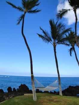 hawaiian hammock