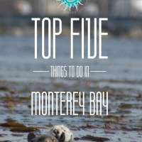 Monterey Bay Top Five