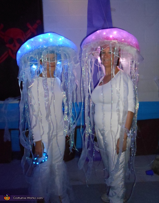 jellyfish11