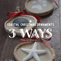 DIY Coastal Christmas Ornaments 3 Ways