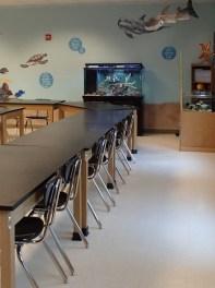 ocean classroom 2
