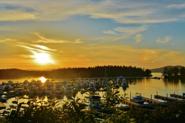 roche harbor sunset