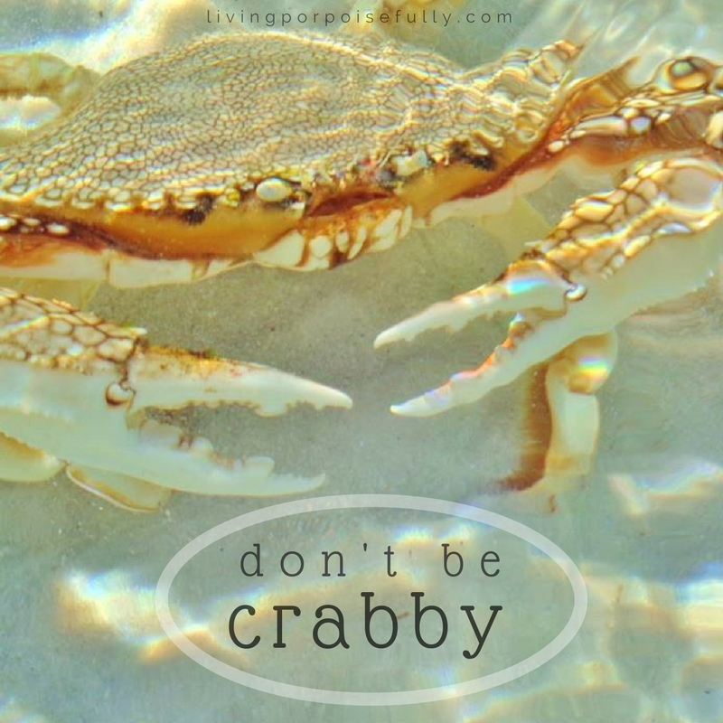 Don't Be Crabby :)