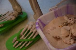 skeleton-flip-flops-and-seashells-800x533